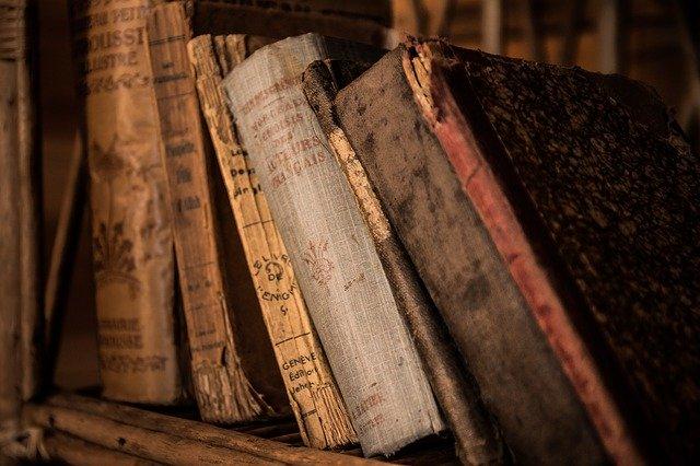 La novela que debes de leer en pandemia: La peste
